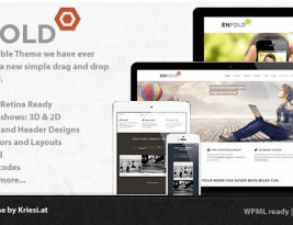 Clean, Responsive and Multi Purpose Enfold WordPress Theme