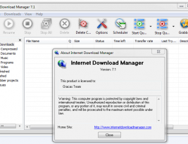 Internet Download Manager 7.1 Full Version With 3D Effects
