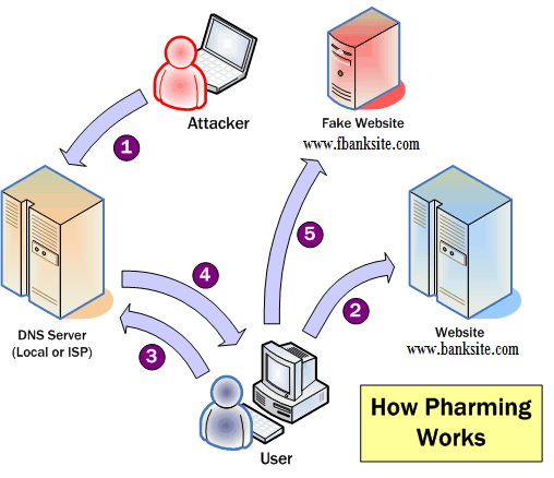 pharming hacking diagram