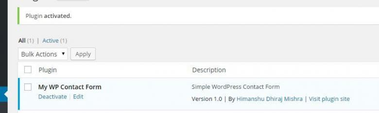 develope own wordpress plugin